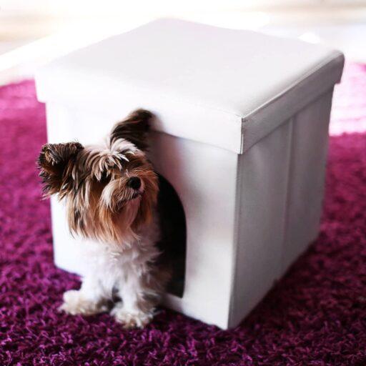 casas para perros plegable