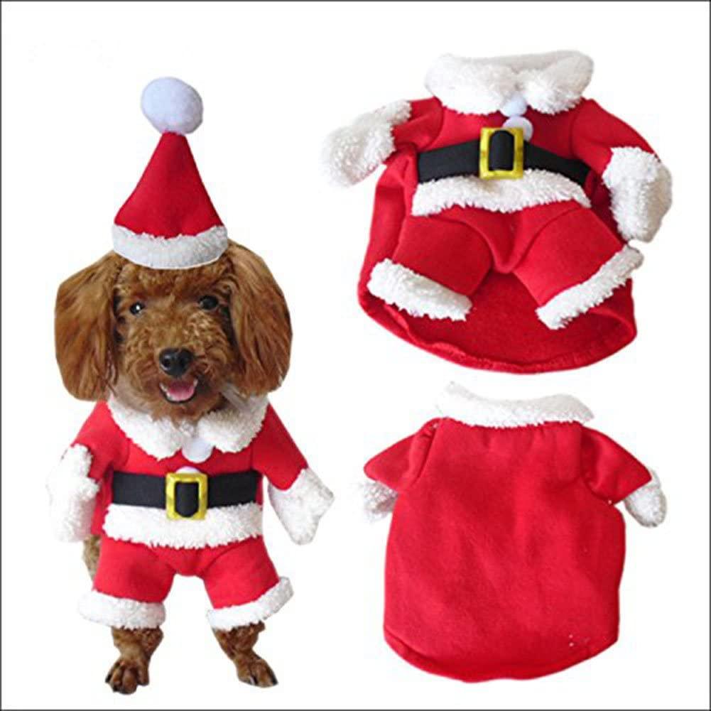 disfraz para perro